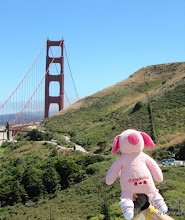 Photo: (Year 3) Day 10 - Pippa (again) at the Golden Gate Bridge in San Fran