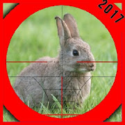 La chasse au lapin 2