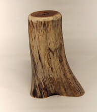 "Photo: Russ Iler 7"" x 4"" x 3"" bud vase with glass tube [yew]"