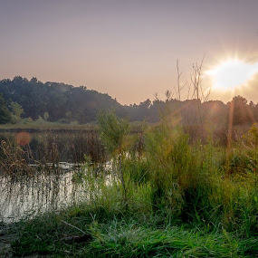 Appleton Lake Sunset by Chris Mowers - Landscapes Waterscapes ( appleton lake, grass, sunset, brighton recreation area, evening )