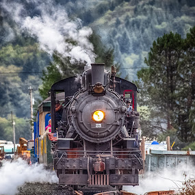 Garibaldi Steam Engine by Debbie Slocum Lockwood - Transportation Trains