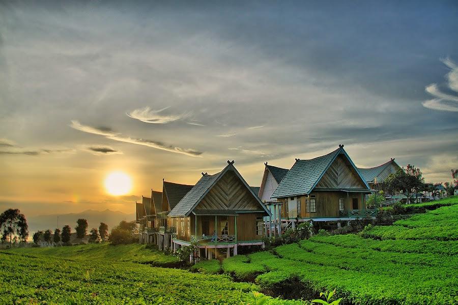 Gare Mountain Villa by Gunawan Qiu - Landscapes Mountains & Hills ( #pagaralam #indonesia #southsumatera )