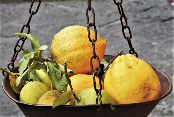 Limoni su sfondo grigio di paolo-spagg