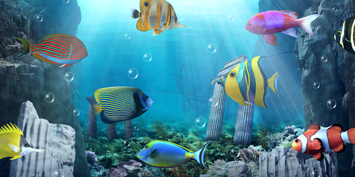 حوض السمك خلفية حية التطبيقات على Google Play