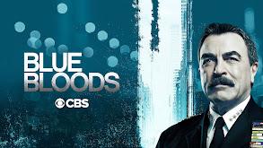 Blue Bloods thumbnail