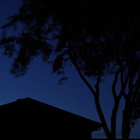 Darkness by Susan Grefe - City,  Street & Park  Vistas