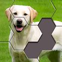 Hexa Jigsaw Puzzle ® icon