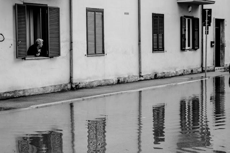 dopo la pioggia, il bagnato di slyweb