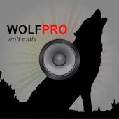 Wolf Hunting Calls-Wolf Call
