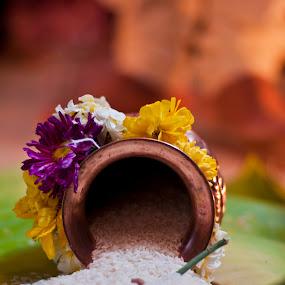 by Sudheer Hegde - Wedding Ceremony ( rice, color, 50mm, sudheer, bride, nikon, groom, flower )