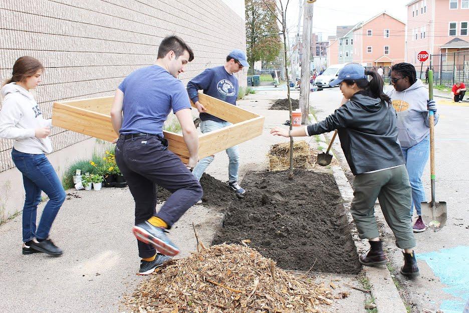 Building an Urban Rain Garden