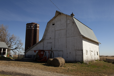Photo: Niman Ranch, Paul Willis