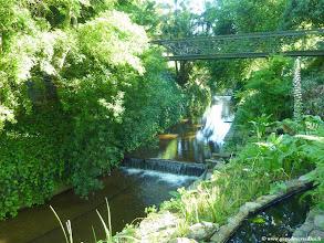 Photo: #008-Le jardin du Vineyard Hotel & Spa à Cape Town.