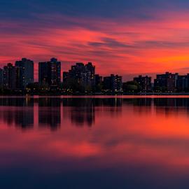 blue sunset  by Gigi Kent - City,  Street & Park  Skylines