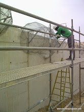 Photo: Tematización del muro de elefantes.