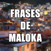 Frases de Maloka