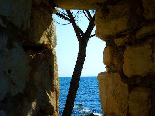 Una finestra sul mare di scodi2
