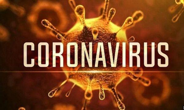 Virus corona có nguy hiểm không