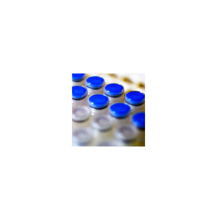 Shrimp Alkaline Phosphatase (SAP)