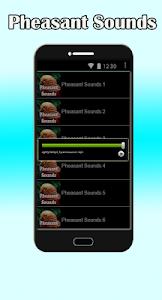 Pheasant Sounds screenshot 2