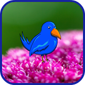 Blue Bird Journey In Flowers