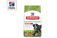 Angebot für Youthful Vitality für Hunde großer Rassen, 2,5kg im Supermarkt