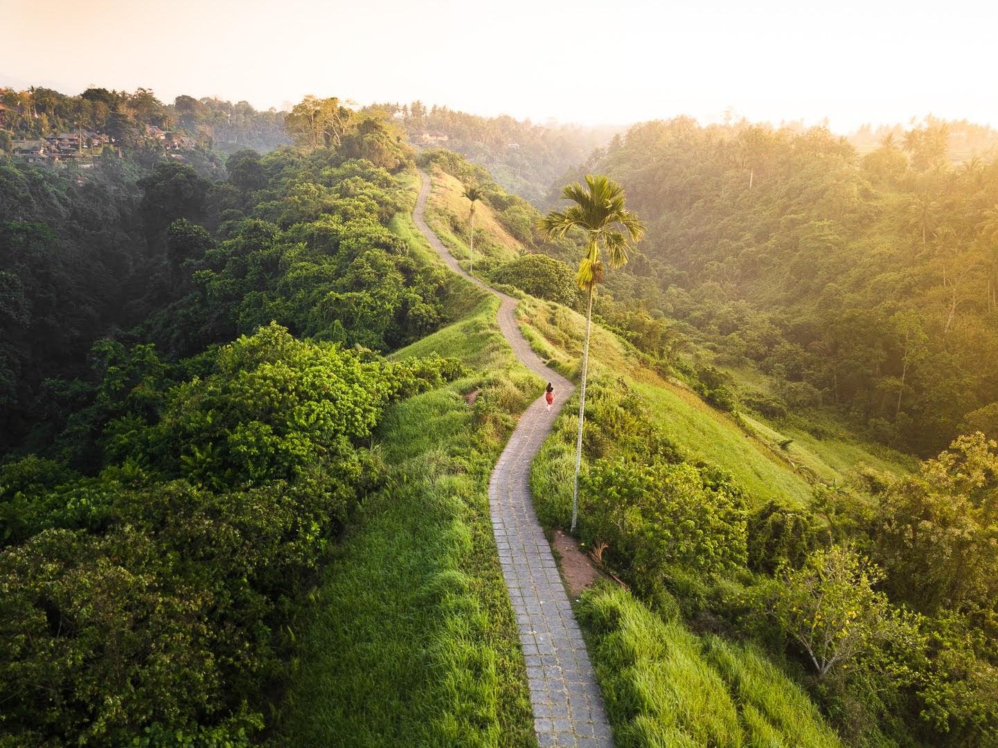 Gambar Campuhan Ridge Walk
