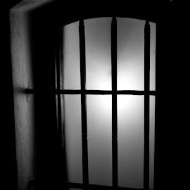 by Pavel Vlček - Black & White Objects & Still Life