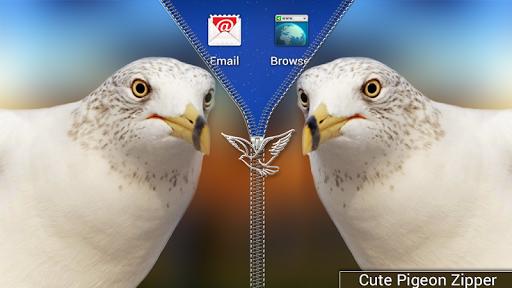 可爱的鸽子拉链锁