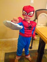 Photo: Spider Finn