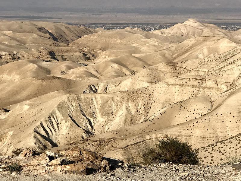 Deserto in Israele  di emidesa