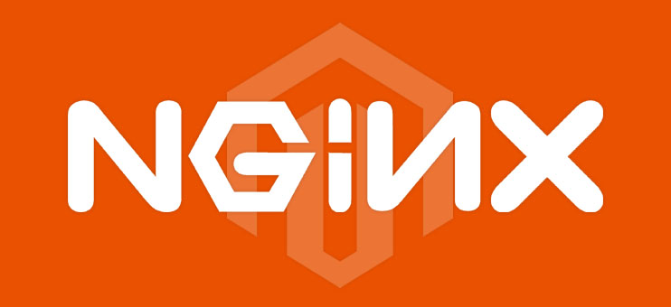 how to use nginx with magento 2