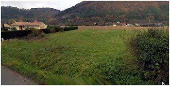 terrain à Castels (24)