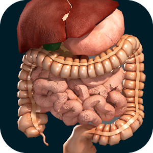 Tải Internal Organs in 3D (Anatomy) APK