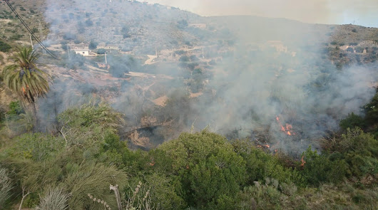 Incendio en Bédar: el Infoca y Bomberos del Levante actúan en la zona
