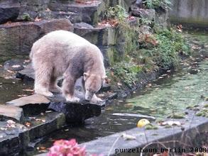 Photo: Neugieriger Blick in den Wassergraben ;-)