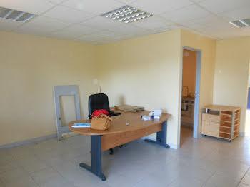 locaux professionels à Montrevel-en-Bresse (01)