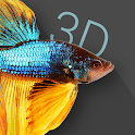 Betta Fish 3D -  3D Live Wallpaper icon