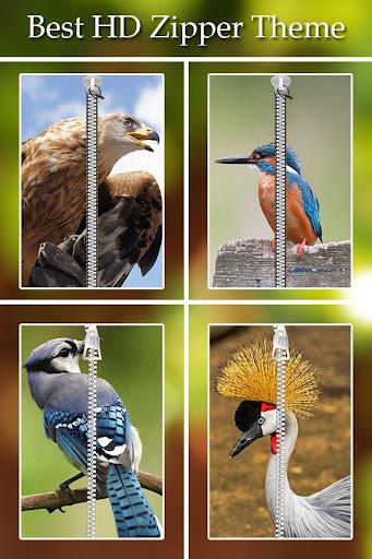 Bird Zipper Lock