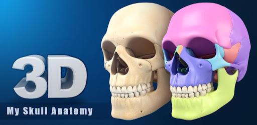 My Skull Anatomy - Apps on Google Play