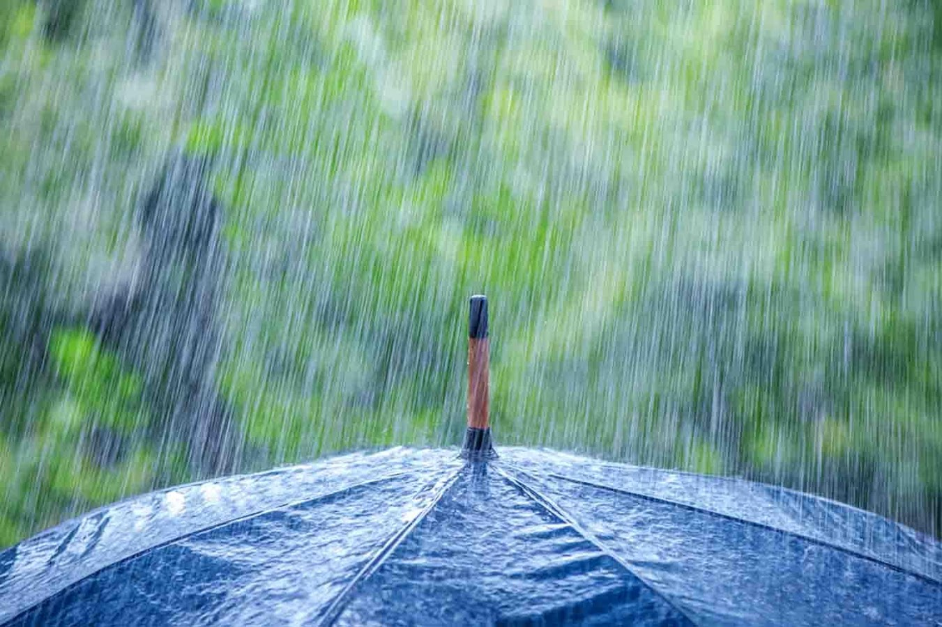 Rain Wallpaper Android Apps on Google Play