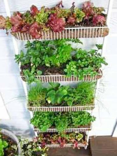 庭の装飾のアイデア