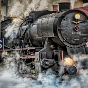 In the station by Stane Gortnar - Transportation Trains ( historic train, qaaq, qaq, wqaq, station, q, a, swqa, train, qa, old train )