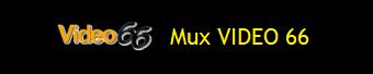 MUX VIDEO 66