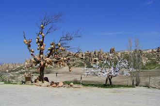 Photo: cuda natury