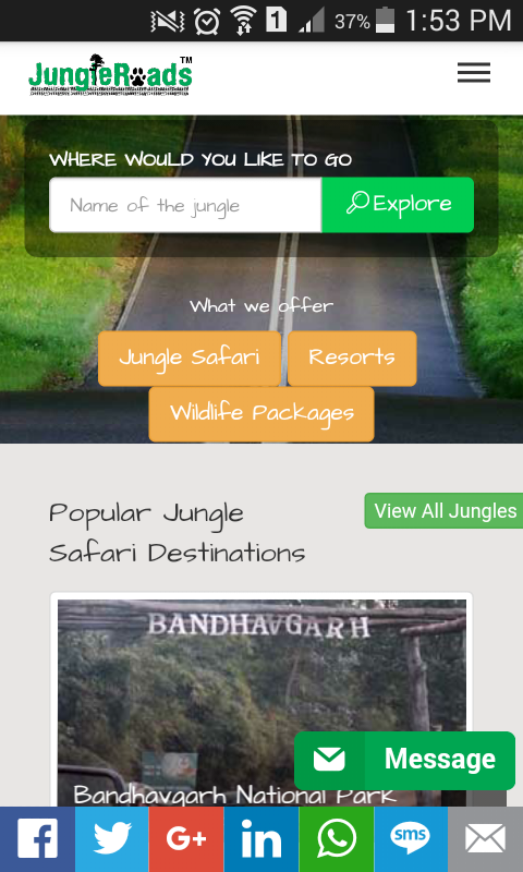 JungleRoads- screenshot