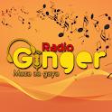 Radio Ginger- Hindi Songs | Latest songs Music App icon