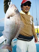 """Photo: ほーら。 良型の真鯛じゃないのー! 軽くボケてみた""""ササノさん""""です。"""