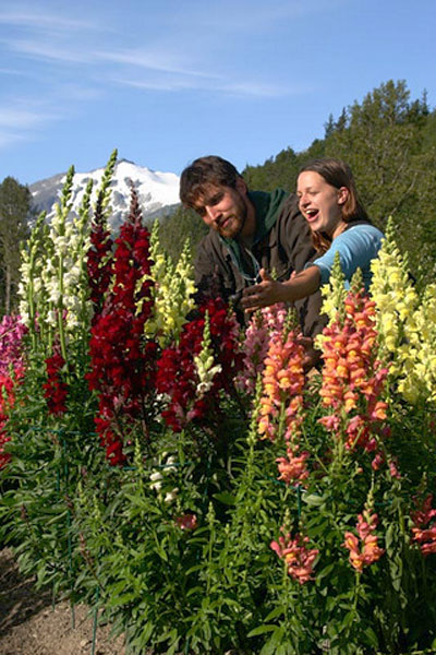 Visit Jewell Gardens, a respite of organic flowers and plants.