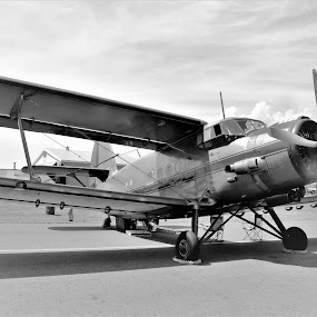 Classics  by Linda    L Tatler - Black & White Objects & Still Life ( airshow, airplane, air force, airport, airplanes )